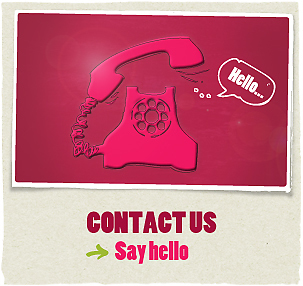 Contact Us title='Contact Us'